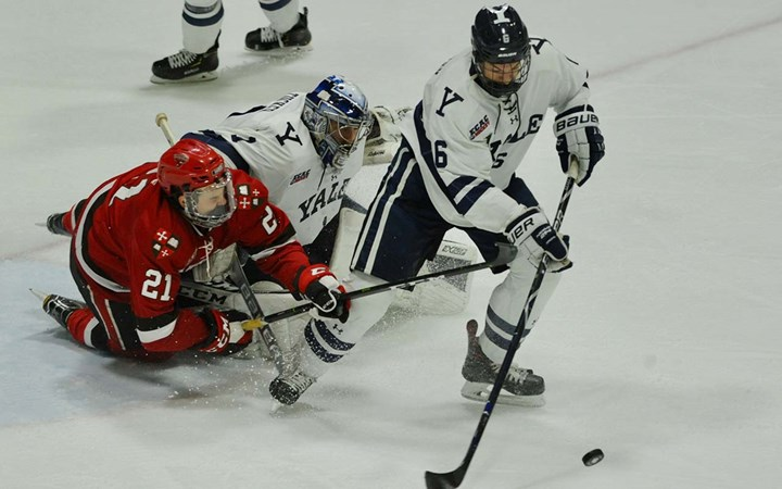 Bulldogs Host North Country Squads